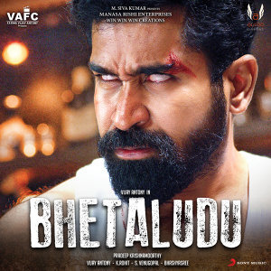 Bhetaludu (Original Motion Picture Soundtrack)