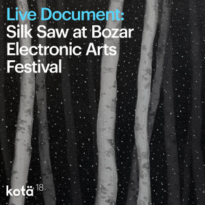 Live document: Silk Saw at Bozar Electronic Arts Festival