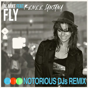 Fly - Remix