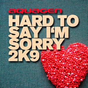 Hard To Say I'm Sorry (難以說抱歉)