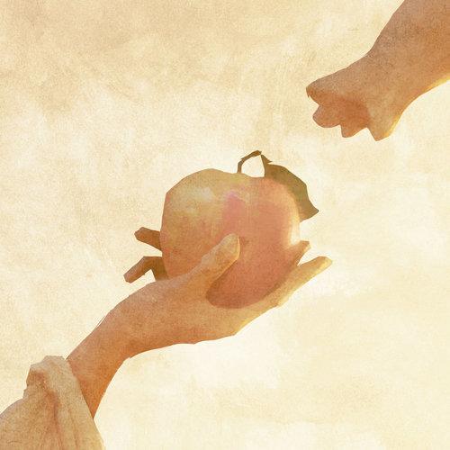りんごの木 / 宇宙からやってきたにゃんぼー