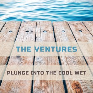 Plunge Into The Cool Wet