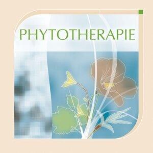 Musiques de soins : Phytothérapie