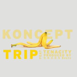 Trip (feat. Tenacity)