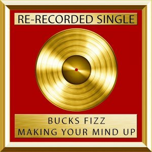 Making Your Mind Up - Rerecorded