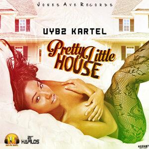Pretty Little House - Single