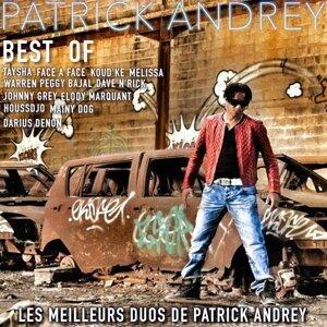 Best Of - Les meilleurs duos de Patrick Andrey