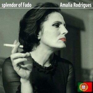 Splendor of Fado