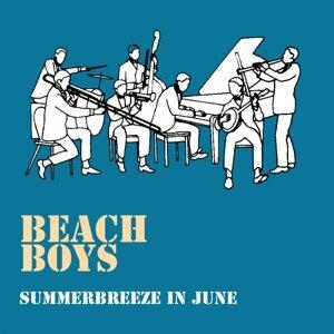 Summerbreeze in June