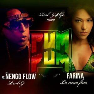 Pum Pum (feat. Nengo Flow)