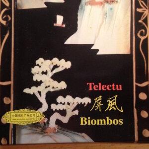 Biombos