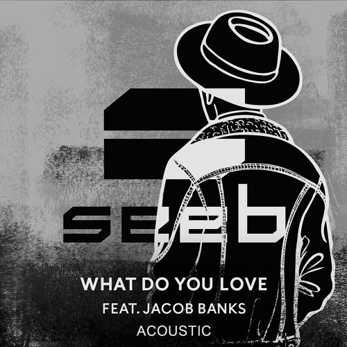 What Do You Love - Acoustic