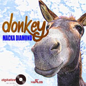 Donkey - Single