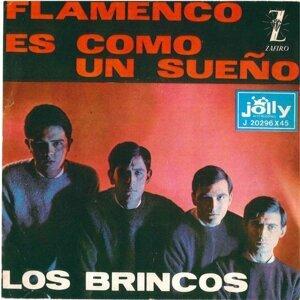 Flamenco - Es come un sueño