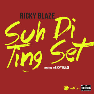 Suh Di Ting Set - Single