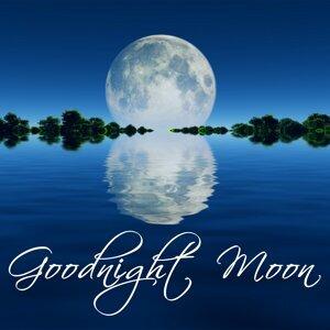 Goodnight Moon - Newborn Sleep Aids, Sleeping Songs, Sleep Music to Sleep Well, Dream Catcher