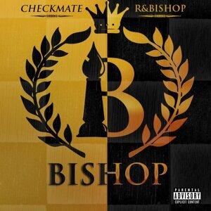 Checkmate / R&Bishop