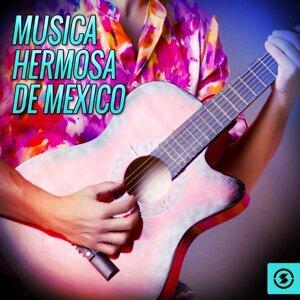 Musica Hermosa de Mexico