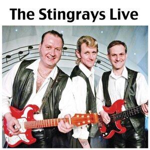 The Stingrays Live