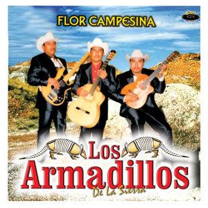 Flor Campesina