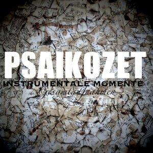 Instrumentale Momente