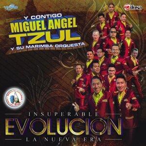 Evolucion. Música de Guatemala para los Latinos