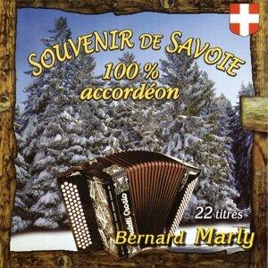 Souvenir de Savoie 100% accordéon, Vol. 1