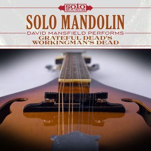 Solo Mandolin: David Mansfield Performs Grateful Dead's Workingman's Dead