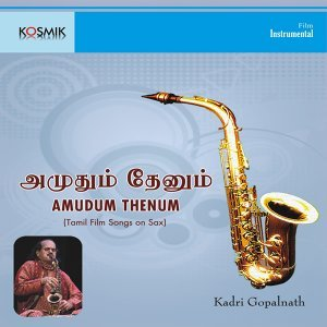 Amudum Thenum - Tamil Film Songs on Sax