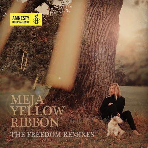 Yellow Ribbon - Freedom Remixes