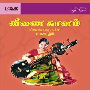 Veena Gaanam