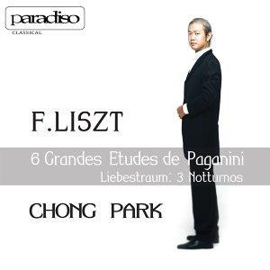 """F. Liszt: 6 Grandes Etudes de Paganini - Liebestraum """"3 Noctturnos"""""""