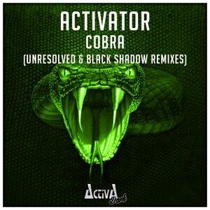Cobra - The Remixes