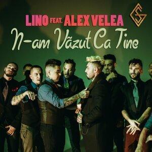 N-Am Vazut Ca Tine (feat. Alex Velea)