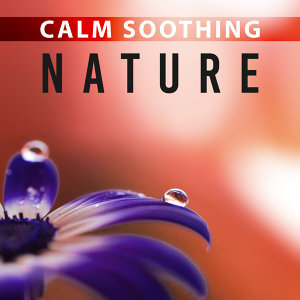 Calm Soothing Nature – Calm Nature Sounds, Earth Music, Peaceful Nature, Tranquil Music, Deep Rest