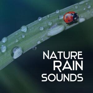 Nature Rain Sounds – Calming Water Waves, Soothing Sounds, Relaxing Rain, Healing Vibes