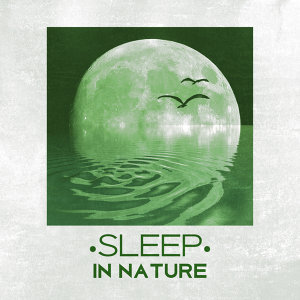 Sleep in Nature - Peaceful Sounds of Nature for Sleep, Easily Fall Asleep, Relax, Restful Sleep