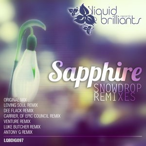 Snowdrop - Remixes