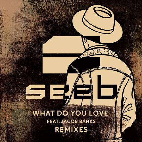 What Do You Love - Remixes