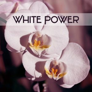 White Power – Moment for Exercises of Yoga, Music for Meditation, Concentration Melody, Wonderful Time Rest, Mute and Listen to Inside