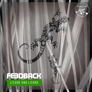 Lizard And Lizard