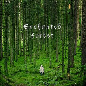 Enchanted Forest (魔幻森林)