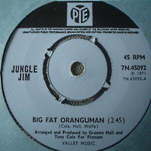 Big Fat Oranguman