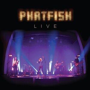 Phatfish - Live