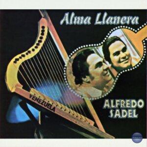 Alma Llanera
