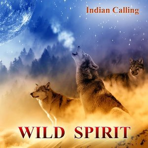 Wild Spirit - Contemporary Native American Music