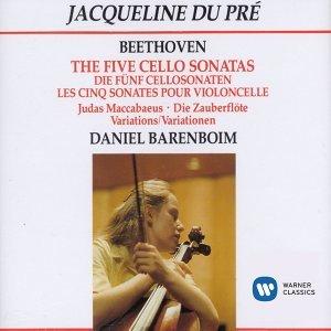 The Five Cello Sonatas