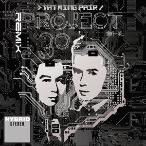 Remix - Project 30