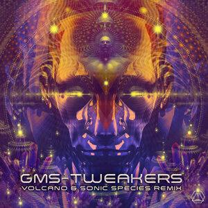 Tweakers - Volcano & Sonic Species Remix