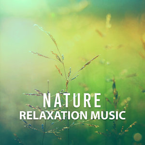Nature Relaxation Music – Rest with New Age, Nature Sounds, Music for Stress Relief, Relax Yourself